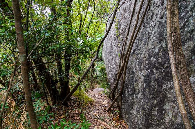 walkway on Pidurangala