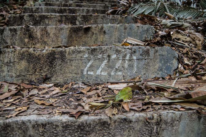 Random numbered stair.