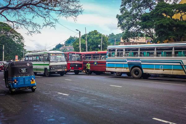 Local transportation.