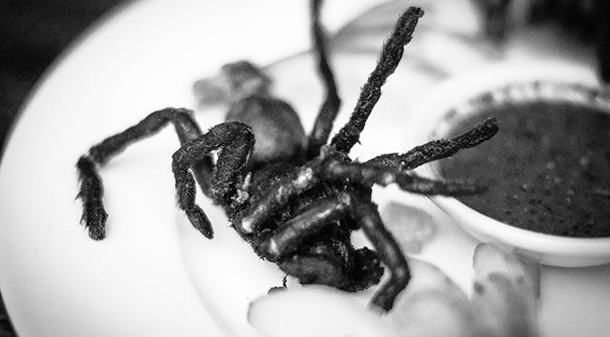 One of Thanksgiving delicacies was a tarantula leg.